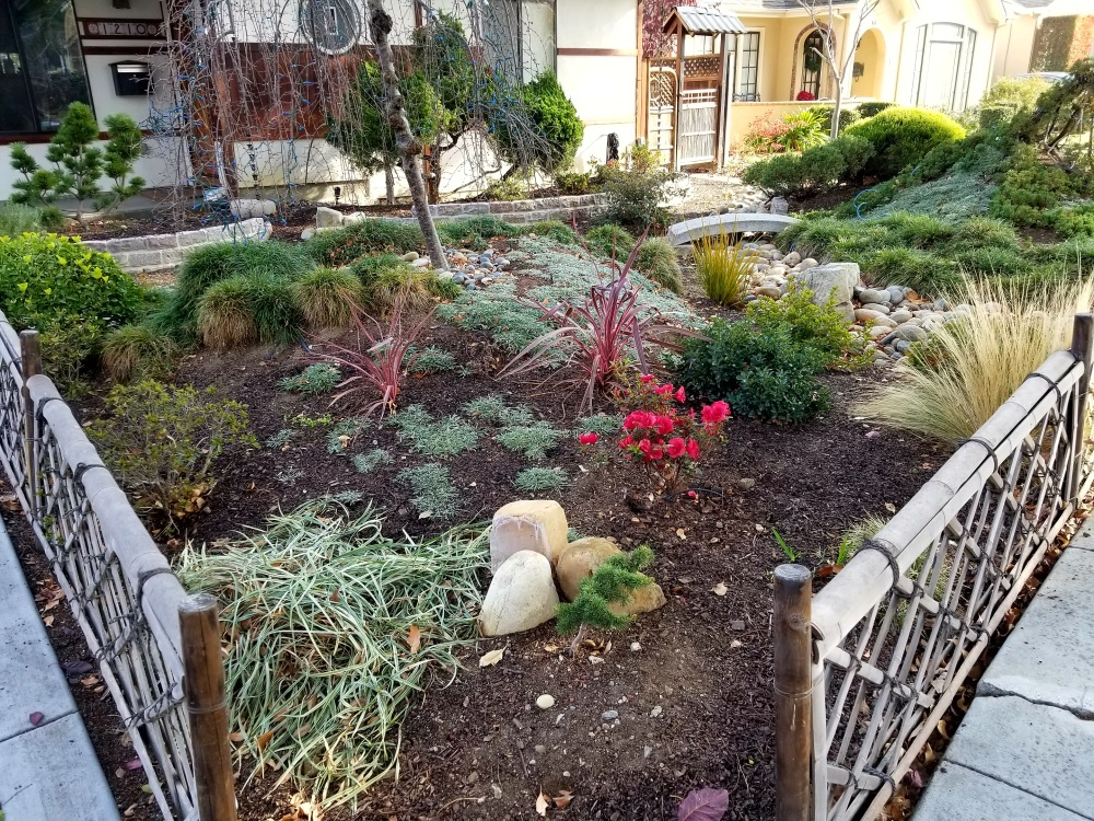 Front Garden 1618